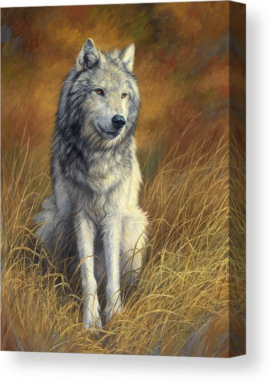 Wolf Canvas Print featuring the painting Old and Wise by Lucie Bilodeau