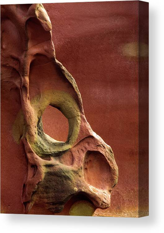 Geology Canvas Print featuring the photograph Sinister Forms by By Mediotuerto