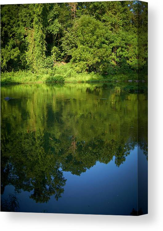 Tranquility Canvas Print featuring the photograph Still Water On The Potomac River by Cameron Davidson