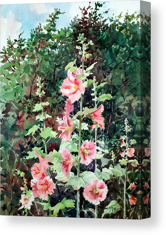 Peter Sit Watercolor Canvas Print featuring the painting Oxenden Hollyhock by Peter Sit