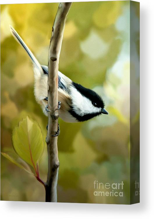 Day Dreams Canvas Print featuring the painting Day Dreams by Beve Brown-Clark Photography