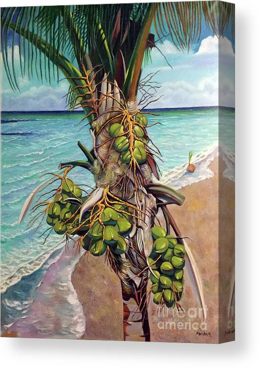 Coconuts Canvas Print featuring the painting Coconuts on beach by Jose Manuel Abraham