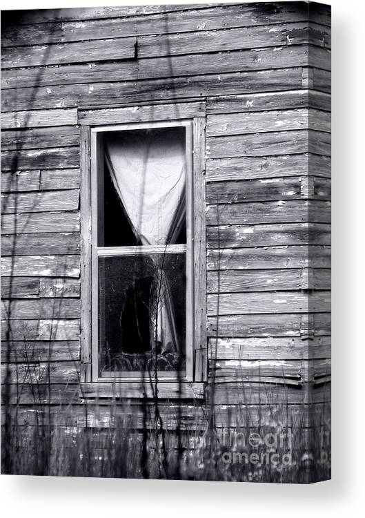 Windows Canvas Print featuring the photograph Window by Amanda Barcon