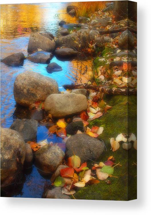 Autumn Canvas Print featuring the photograph Autumn By The Creek by Tara Turner