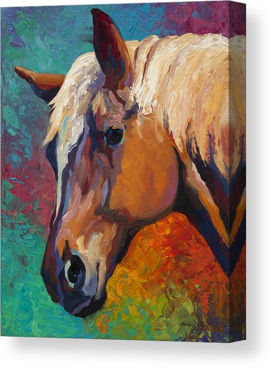 Horses Canvas Print featuring the painting Bandit by Marion Rose