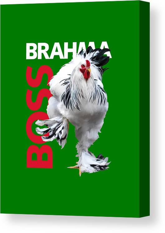 Brahma Canvas Print featuring the digital art Brahma Boss T-shirt print by Sigrid Van Dort