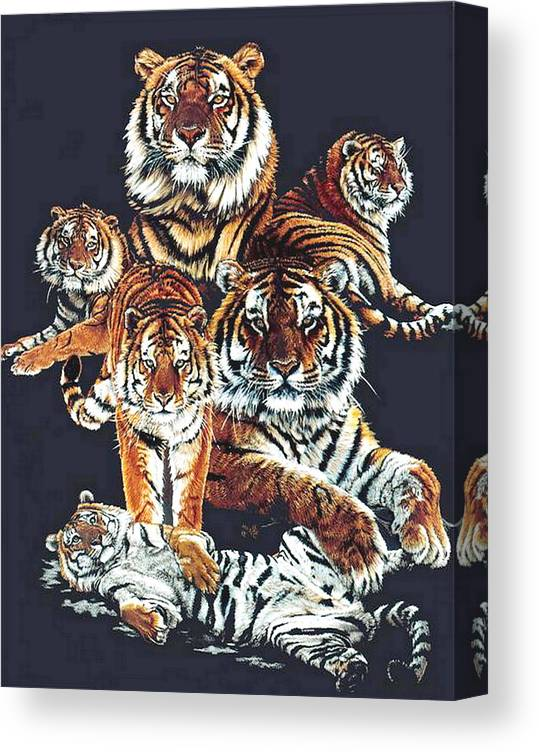 Tiger Canvas Print featuring the drawing Dynasty by Barbara Keith