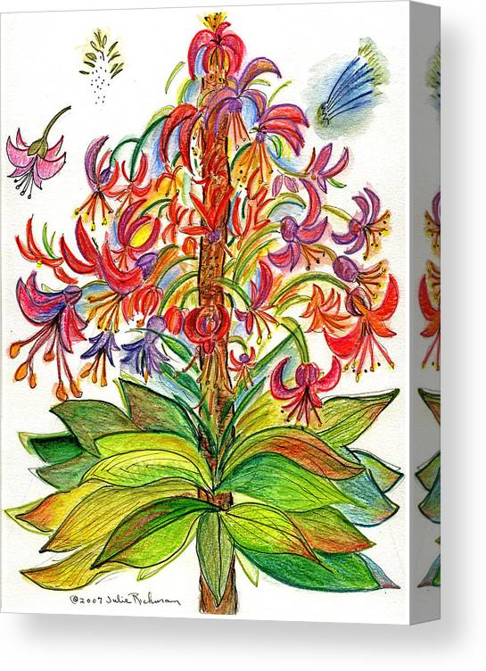 Flowers Nature Botany Drawing Julie Richman Flora Pencil Canvas Print featuring the painting Funny flowers on green plant by Julie Richman