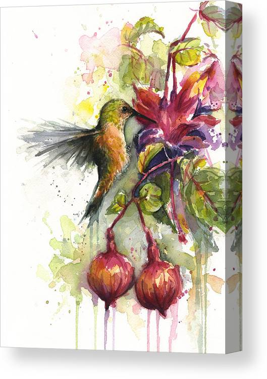 Hummingbird Canvas Print featuring the painting Hummingbird and Fuchsia by Olga Shvartsur