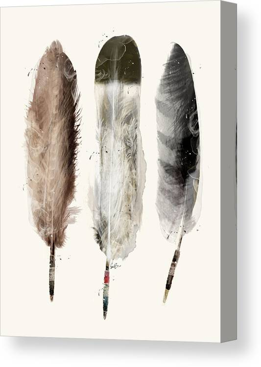 Eagle Feather Canvas Print featuring the painting Native Feathers by Bri Buckley