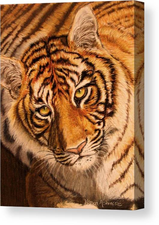 Tiger Canvas Print featuring the drawing Tiger by Karen Ilari