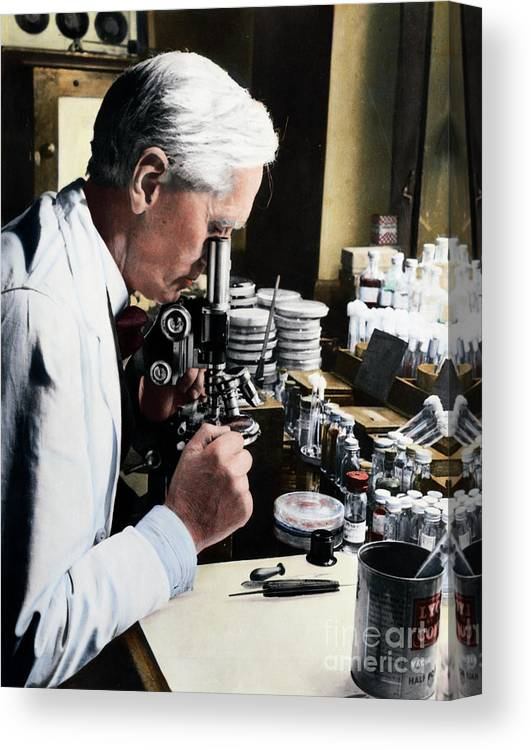 Microscope Canvas Print featuring the photograph Alexander Fleming At Microscope by Bettmann