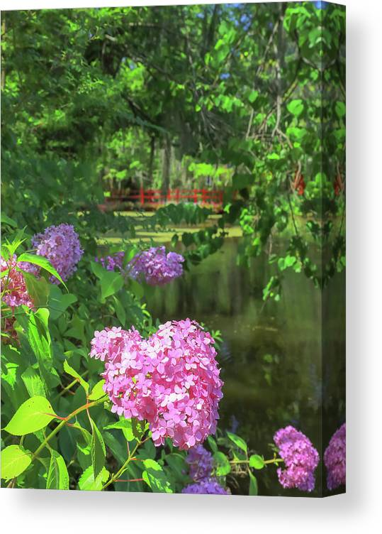 Flowers Canvas Print featuring the photograph Beautiful Magnolia Garden by Dan Sproul