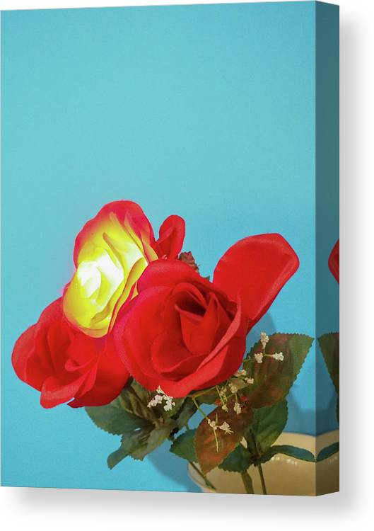 Flower Canvas Print featuring the photograph Lighted Rose by C Winslow Shafer