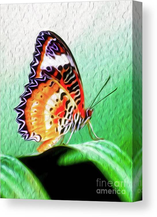 Butterfly Canvas Print featuring the digital art Malay Lacewing Butterfly II by Kenneth Montgomery