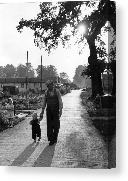 Toddler Canvas Print featuring the photograph Walking In Sunshine by Bert Hardy