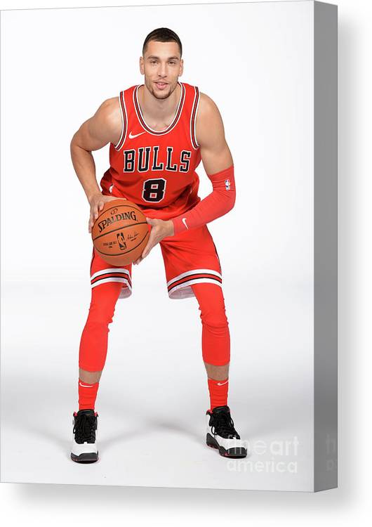 Media Day Canvas Print featuring the photograph Zach Lavine by Randy Belice