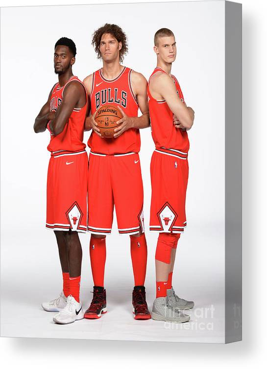 Media Day Canvas Print featuring the photograph Lauri Markkanen, Bobby Portis, and Robin Lopez by Randy Belice
