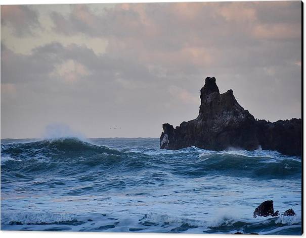 The Lost Coast Canvas Print featuring the photograph The Pacific Ocean by Sagittarius Viking