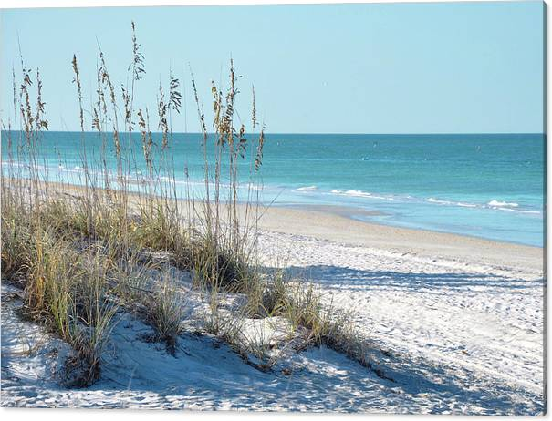 Serene Florida Beach Scene by Rebecca Brittain