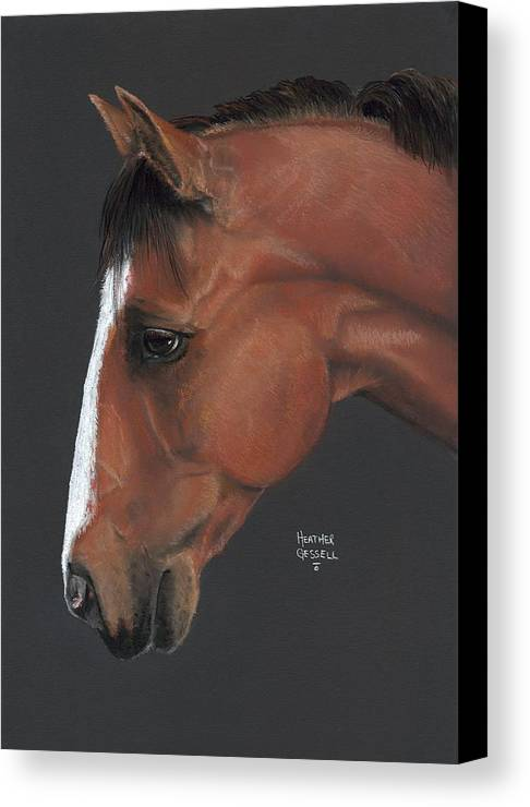 Horse Canvas Print featuring the pastel Bay Horse by Heather Gessell