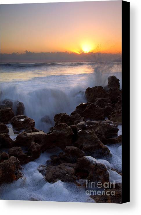 Coral Cove Canvas Print featuring the photograph Breaking Dawn by Mike Dawson