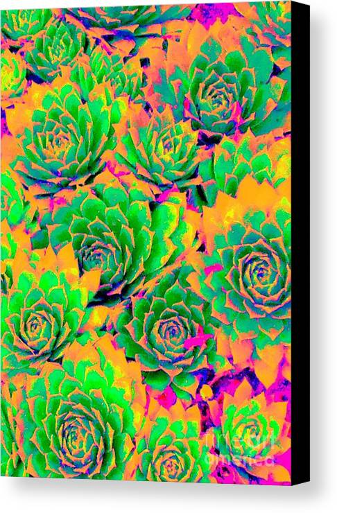 Plant Canvas Print featuring the photograph Fiesta Chicks by Ann Johndro-Collins