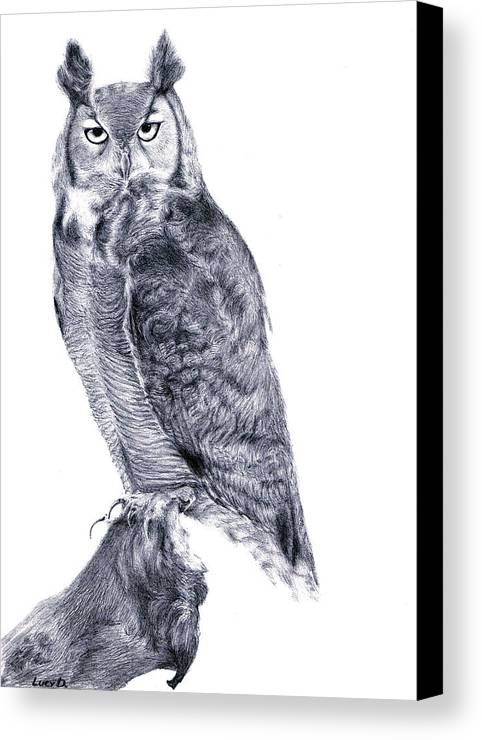 Owl Canvas Print featuring the drawing Owl by Lucy D