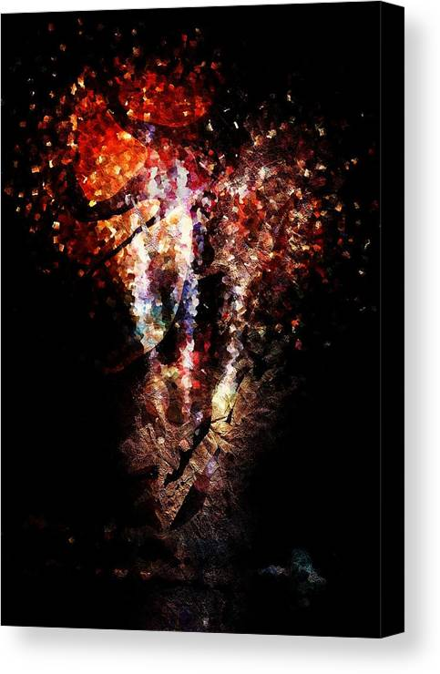 Painted Canvas Print featuring the digital art Painted Fireworks by Andrea Barbieri