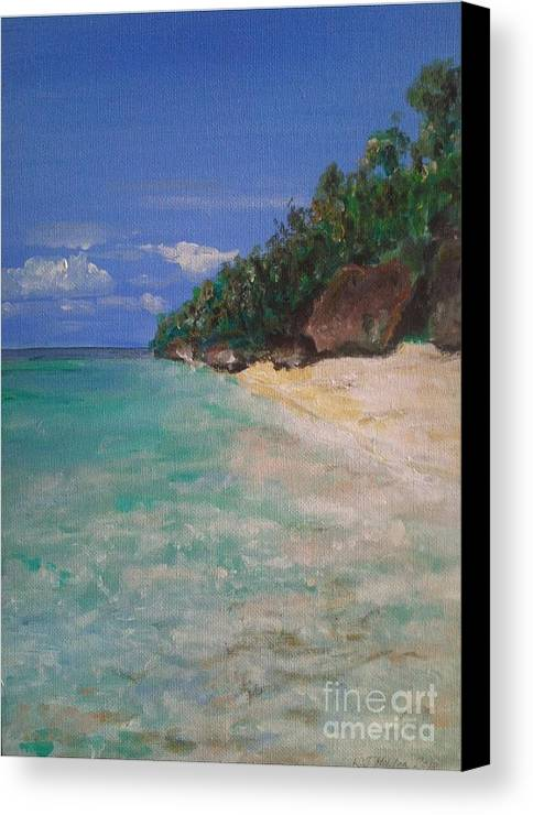 Philippines Canvas Print featuring the painting Siquijor Beach by Richard John Holden RA