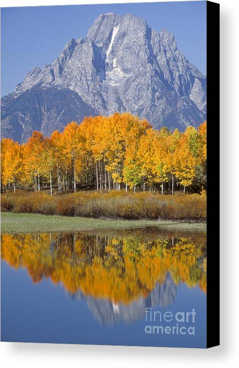 Bronstein Canvas Print featuring the photograph Reflection At Oxbow Bend by Sandra Bronstein