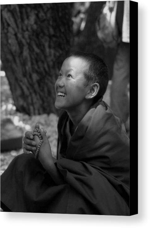 Balck And White Canvas Print featuring the photograph Lama Baby by Lian Wang