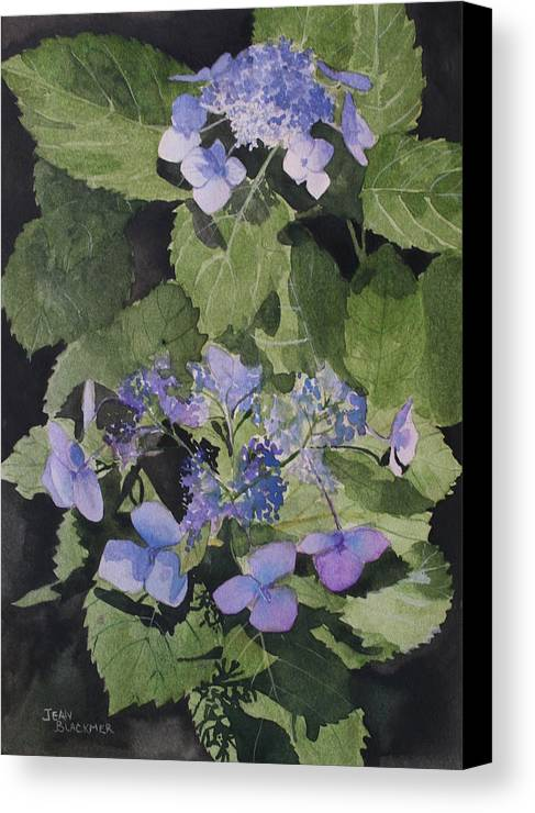 Flowers Canvas Print featuring the painting Blue Lace by Jean Blackmer