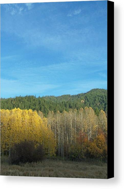 Fall Canvas Print featuring the photograph Cascade Fall by Gene Ritchhart