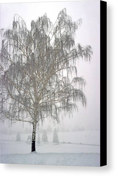 Nature Canvas Print featuring the photograph Foggy Morning Landscape 11 by Steve Ohlsen
