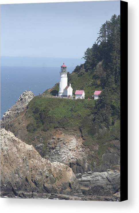 Lighthouse Canvas Print featuring the photograph Heceta Head Lighthouse Li 9000 by Mary Gaines