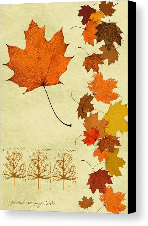 Fall Canvas Print featuring the mixed media Maple Leaf by Pederbeck Arte Gruppe