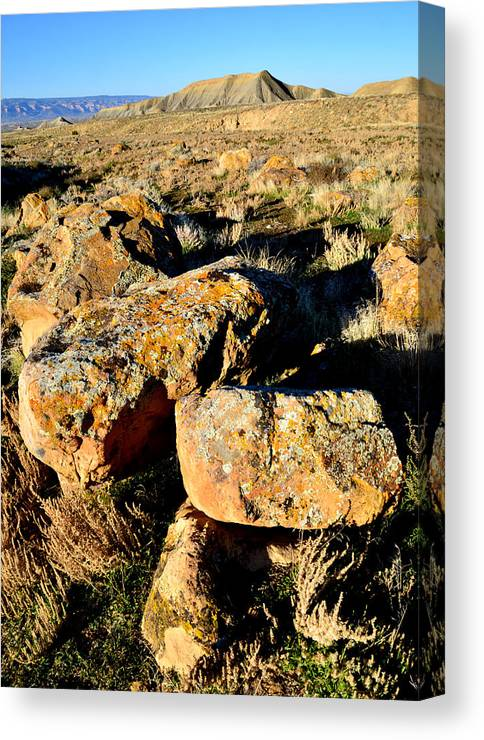 Bookcliffs Canvas Print featuring the photograph Bookcliffs 138 by Ray Mathis