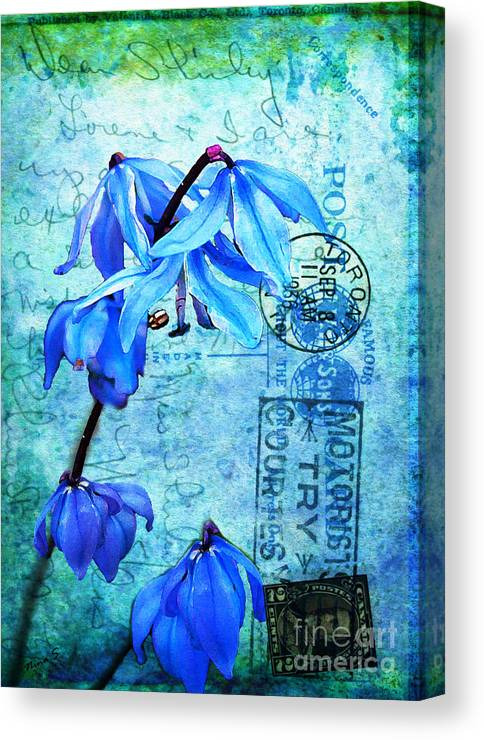 Flowers Canvas Print featuring the photograph Blue Bells On Vintage 1936 Postcard by Nina Silver
