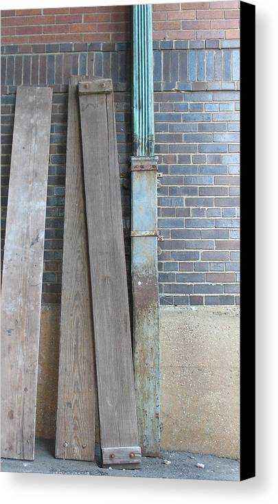 Tones Canvas Print featuring the photograph Tones by Gary Everson