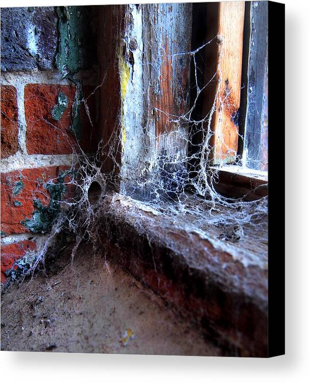 Gastonia Photographs Canvas Print featuring the photograph Burial Ground by Tammy Cantrell