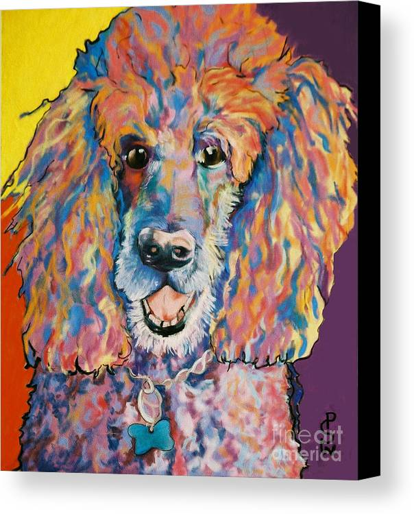 Standard Poodle Canvas Print featuring the painting Cole by Pat Saunders-White