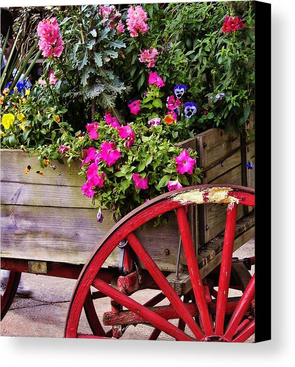Flower Canvas Print featuring the photograph Flowers For Sale by JAMART Photography