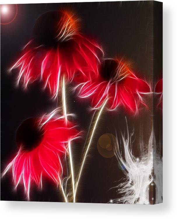 Flowers Canvas Print featuring the photograph Creation by Patricia Motley