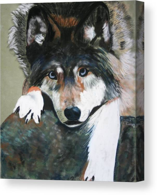 Wolf Canvas Print featuring the pastel Watching by Michele Turney