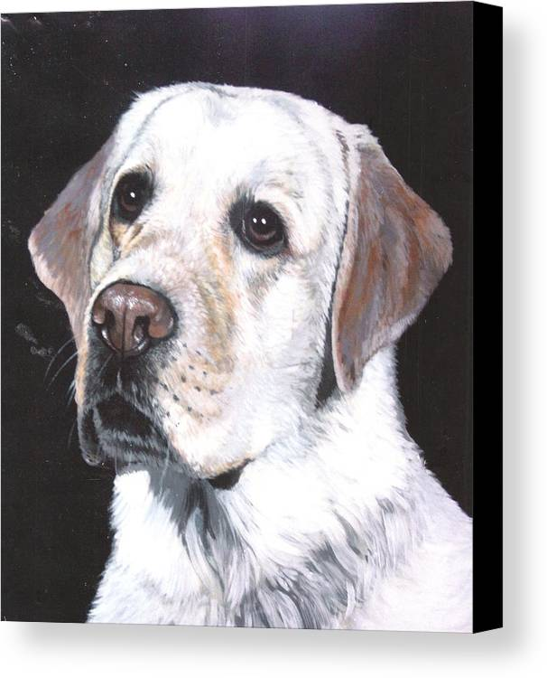 Pet Portrait Canvas Print featuring the painting Retriever by Steve Greco