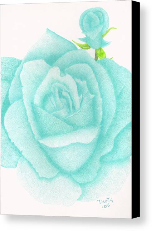 Rose Canvas Print featuring the drawing Turquoise Jewel by Dusty Reed