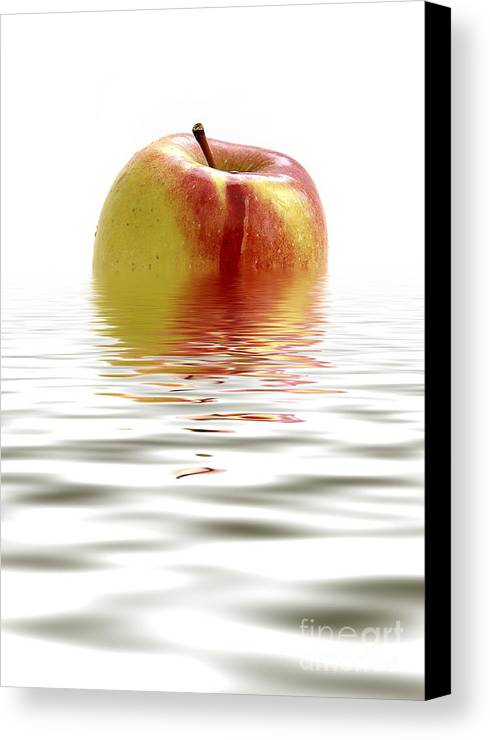 Apple Canvas Print featuring the photograph Apple Afloat by Natalie Kinnear
