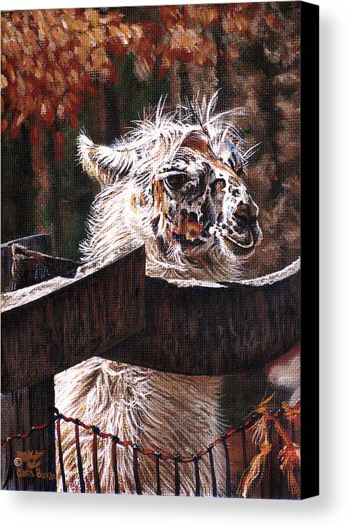 Llama Canvas Print featuring the painting Autumn Greeting by Cara Bevan