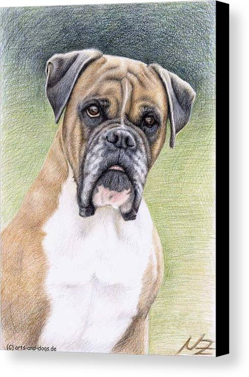 Dog Canvas Print featuring the drawing Boxer Portrait by Nicole Zeug